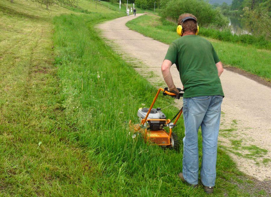 Gartenpflege - Rasenpflege