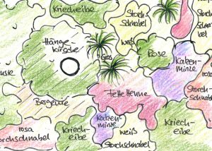 Skizze einer Gartenplanung